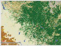 Landcover Map of Central California